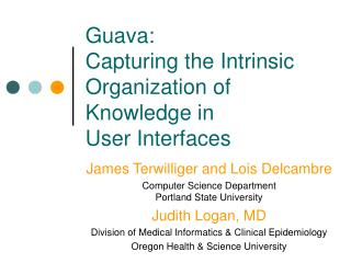 Guava:  Capturing the Intrinsic Organization of Knowledge in  User Interfaces