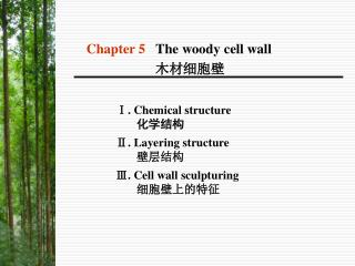 Ⅰ. Chemical structure  化学结构 Ⅱ. Layering structure 壁层结构 Ⅲ. Cell wall sculpturing 细胞壁上的特征