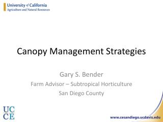 Canopy Management Strategies