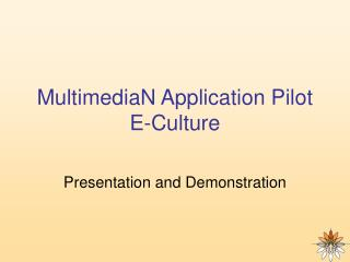 MultimediaN Application Pilot E-Culture