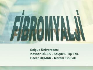 Selçuk Üniversitesi Kevser DİLEK - Selçuklu Tıp Fak.        Hacer UÇMAK - Meram Tıp Fak.