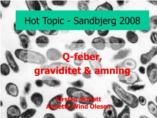 Hot Topic - Sandbjerg 2008