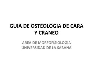 GUIA DE OSTEOLOGIA DE CARA Y CRANEO