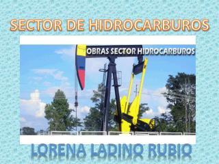 SECTOR DE HIDROCARBUROS