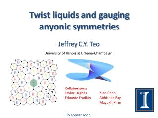 Twist liquids and gauging  anyonic  symmetries