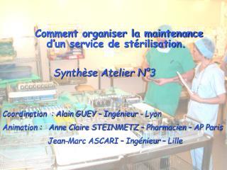 Coordination  : Alain GUEY – Ingénieur - Lyon