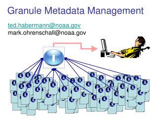 Granule Metadata Management