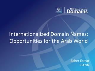 Internationalized Domain Names: Opportunities for the Arab World