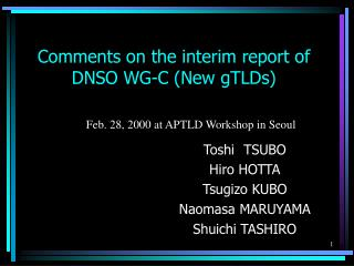 Comments on the interim report of DNSO WG-C (New gTLDs)