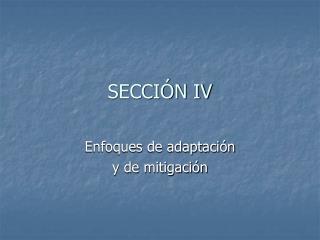 SECCIÓN IV