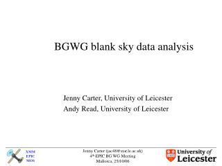 BGWG blank sky data analysis
