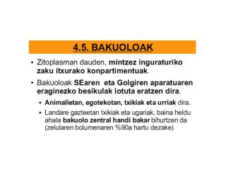 BAKUOLOAK
