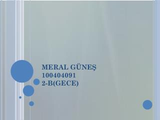 MERAL GÜNEŞ 100404091 2-B(GECE)