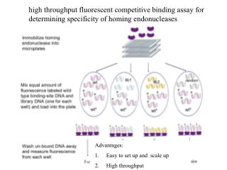 Advantages: Easy to set up and  scale up High throughput