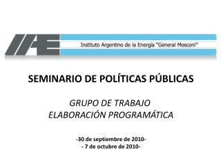 SEMINARIO DE POLÍTICAS PÚBLICAS GRUPO DE TRABAJO  ELABORACIÓN PROGRAMÁTICA