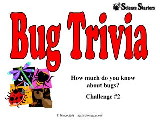 How much do you know  about bugs Challenge 2