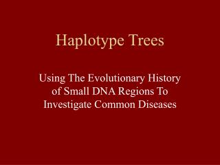 Haplotype Trees