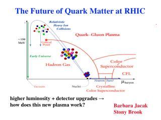 The Future of Quark Matter at RHIC