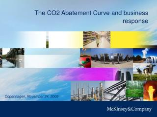 The CO2 Abatement Curve and business response