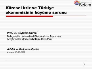 Küresel kriz ve Türkiye ekonomisinin büyüme sorunu