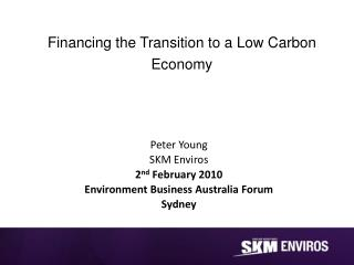 Financing the Transition to a Low Carbon Economy