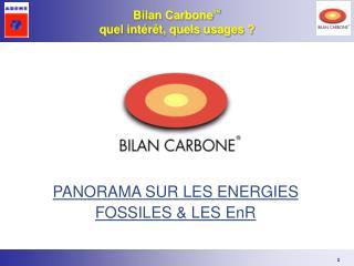 PANORAMA SUR LES ENERGIES FOSSILES & LES EnR
