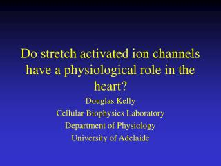 Do stretch activated ion channels have a physiological role in the heart?