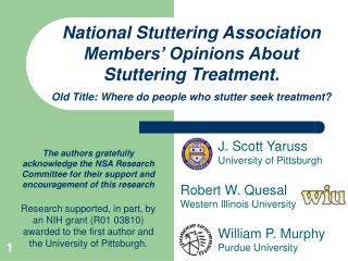 National Stuttering Association Members  Opinions About Stuttering Treatment.  Old Title: Where do people who stutter se