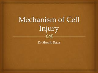 Mechanism of Cell Injury