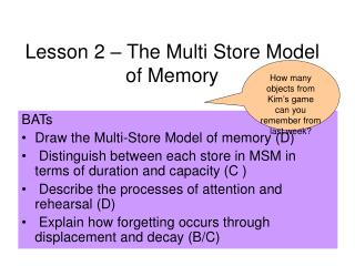 Lesson 2 – The Multi Store Model of Memory
