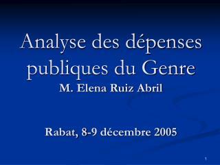 Analyse des dépenses publiques du Genre  M. Elena Ruiz Abril Rabat, 8-9 décembre 2005