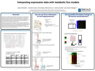 Interpreting expression data with metabolic flux models
