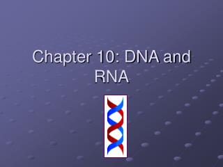 Chapter 10: DNA and RNA