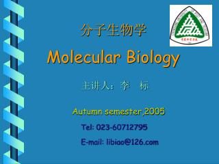 分子生物学 Molecular Biology