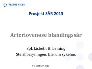 Prosjekt SÅR 2013