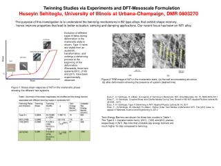 Twinning Studies via Experiments and DFT-Mesoscale Formulation