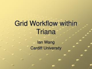 Grid Workflow within Triana