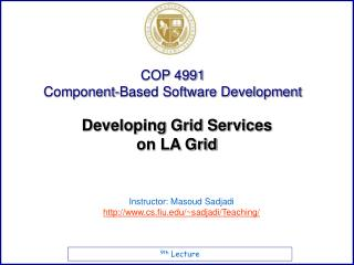 Developing Grid Services  on LA Grid
