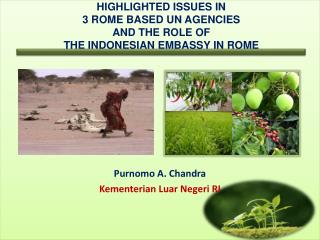 Highlighted issues in  3 Rome based UN Agencies AND THE ROLE OF  THE INDONESIAN EMBASSY IN ROME