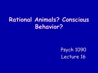 Rational Animals? Conscious Behavior?