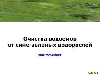 Очистка водоемов от сине-зеленых водорослей grnt/
