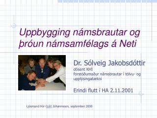 Uppbygging námsbrautar og þróun námsamfélags á Neti