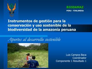 Luis Campos Baca Coordinador Componente 1 Resultado 1