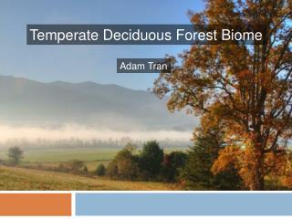 Temperate Deciduous Forest Biome