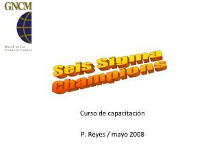 Curso de capacitación P. Reyes / mayo 2008