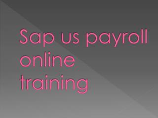 sap us payroll online training in delhi,pune,bangalore