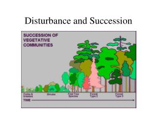 The Nature of Communities  and Ecosystems