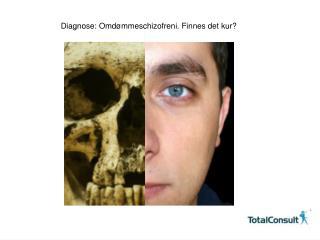 Diagnose: Omdømmeschizofreni. Finnes det kur?