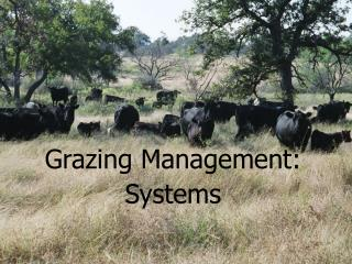 Grazing Management: Systems
