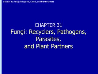 CHAPTER 31 Fungi: Recyclers, Pathogens, Parasites,  and Plant Partners